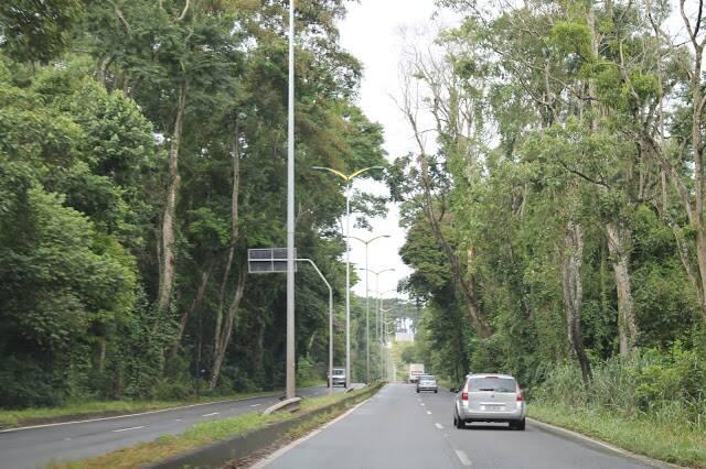 O aluguel de carro para a nossa viagem a Pedra Bela, no interior de São Paulo foi essencial.