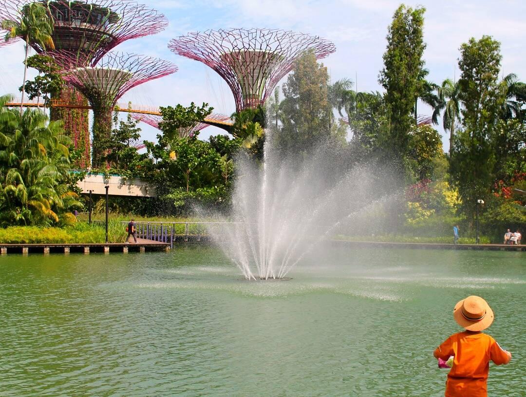 Criança local admirando o lago e as SuperTree em Singapura