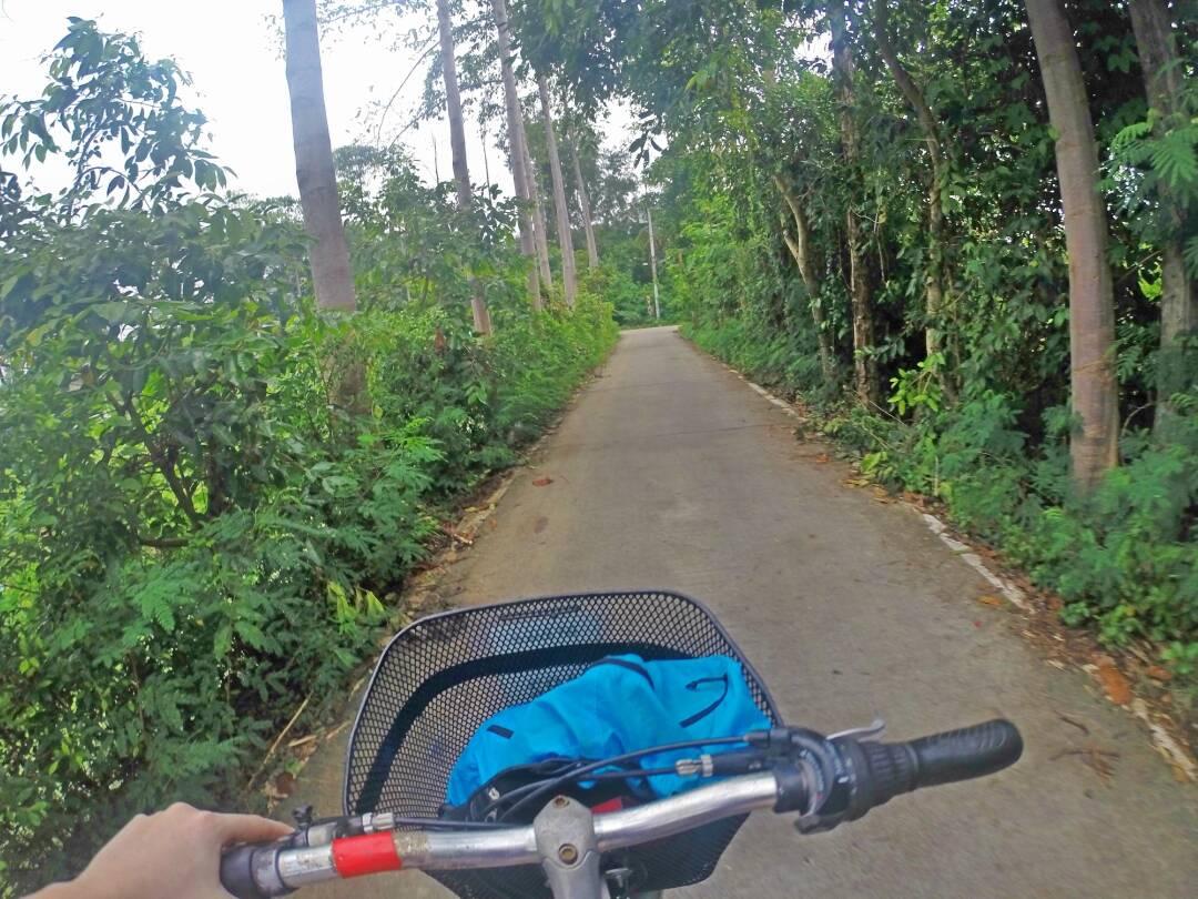 Andando de bike pelo parque Phra Phradaeng