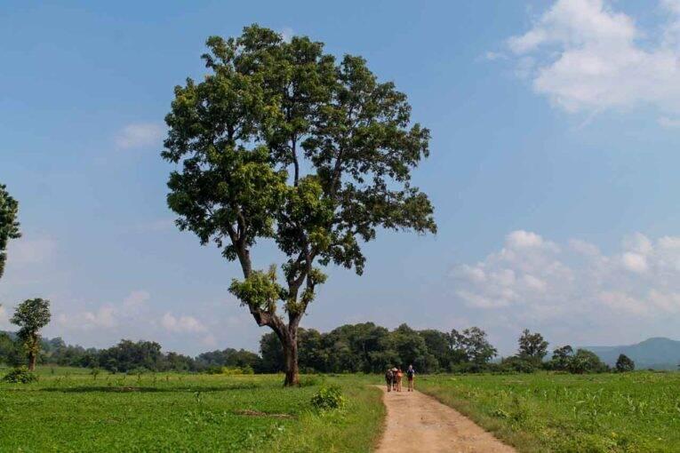 Paisagens incrivelmente maravilhosas no trekking em Hsipaw, no Myanmar