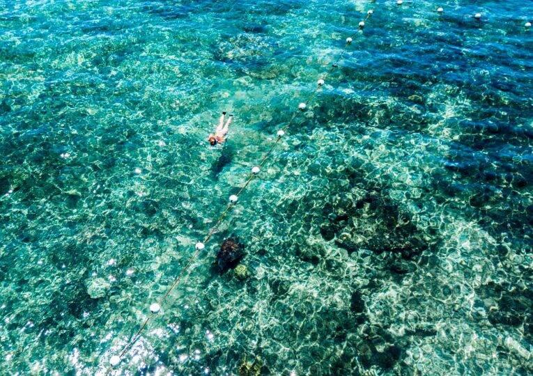 Nadando com tartarugas nas Filipinas. Apo Island