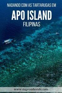 Apo Island: nadando com tartarugas nas Filipinas
