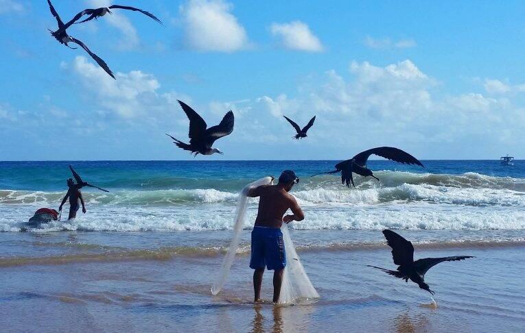Pescadores de manhã bem cedinho na companhia das fragatas na Praia do Americano.