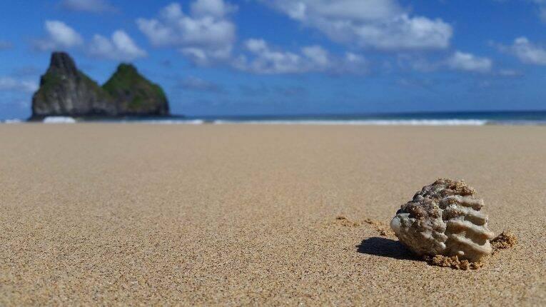 As belezas da Praia do Bode e das praias de Fernando de Noronha.