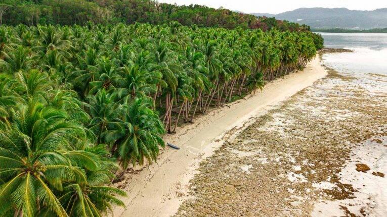 O país dos coqueiros chamado Filipinas. | Foto: Bruno/@naproadavida