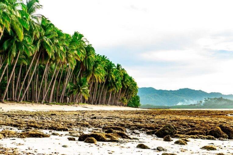 Port Barton, Filipinas: um paraíso para relaxar em Palawan