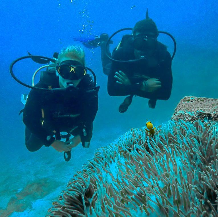 Mergulho em Phi Phi, na Tailândia - Bruno e Vic