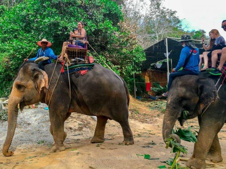 Não recomendamos de maneira nenhuma a interação com elefantes em Phuket.