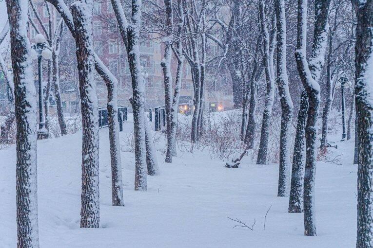 Região central de Winnipeg no inverno durante uma nevasca.