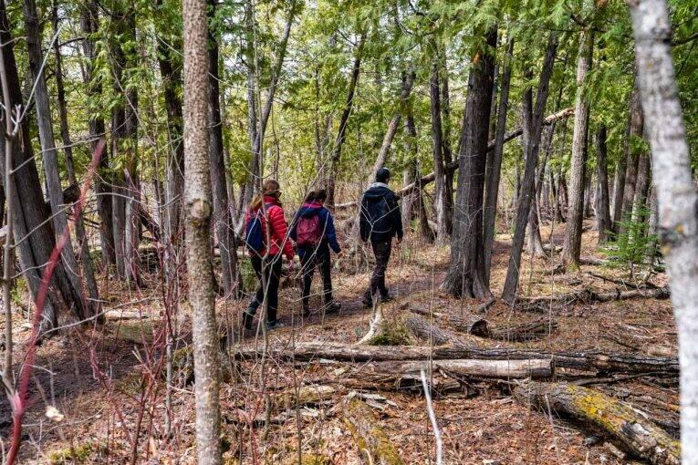 Fazendo trilha no Canadá, no fim do inverno no país. - o que levar para uma trilha