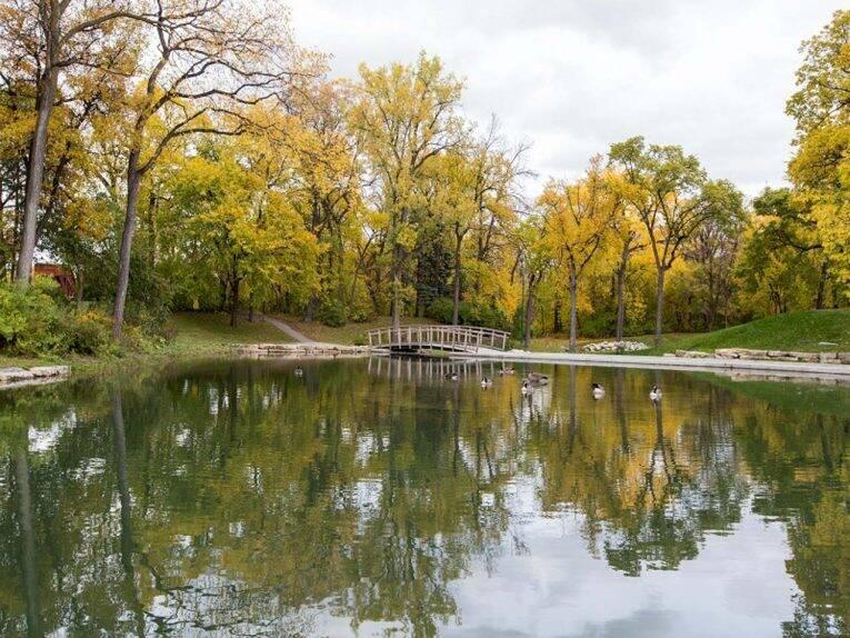 Área com bastante natureza do Kildonan Park.