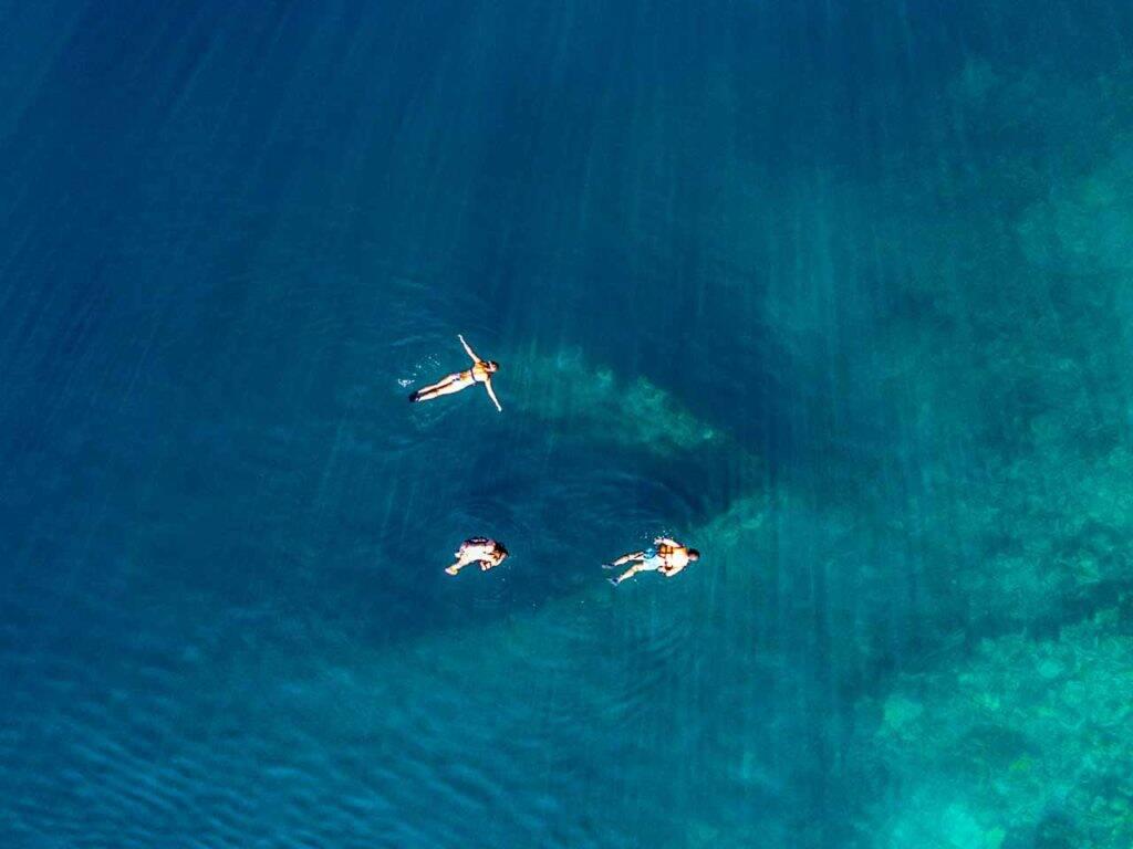 Fazendo snorkel e nadando sobre o Skeleton Wreck em Coron, Filipinas. - naufrágio coron com snorkel