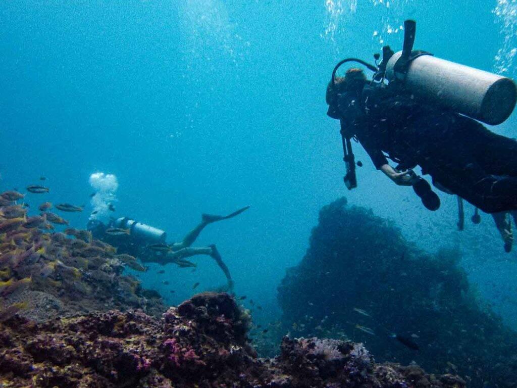 Mergulhando em Phi Phi e apreciando a natureza subaquática da Tailândia.